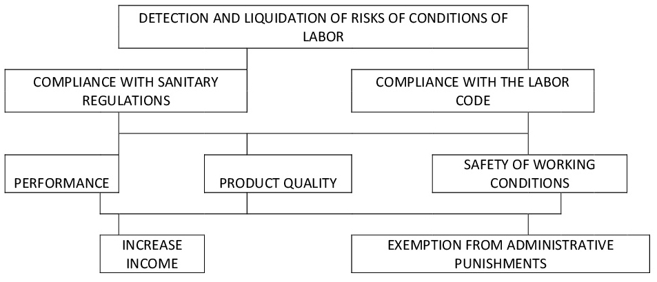 DETECTION AND LIQUIDATION OF RISKS OF CONDITIONS OF LABOR-001.jpg